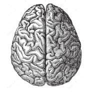Neurology residency Ranking help | Student Doctor Network