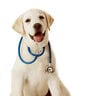 HopeIsStrength